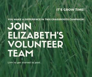 Volunteer Now! Special Election AD 1 Elizabeth Betancourt for Assembly @ Betancourt for Assembly 2019